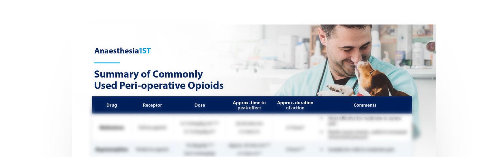 opioidbanner.jpg#asset:2968