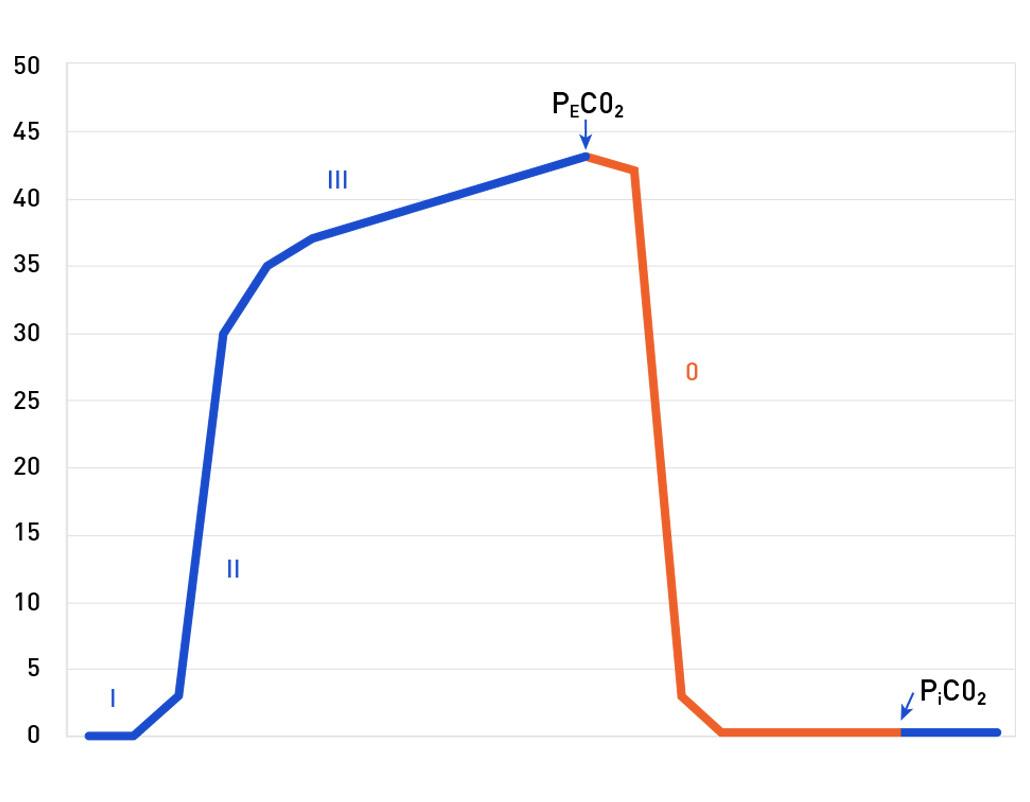 figure1-chart1.jpg#asset:2904